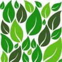 Ogrody Wertykalne - Twój Świat Ogrody Wertykalne Łuków i okolice