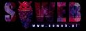 SOWEB  Współpracuj profesjonalnie Kwidzyn i okolice
