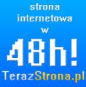 Strona internetowa w 48h! - Akademickie Inkubatory Przedsiębiorczości Brańsk i okolice