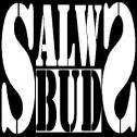 F.H.U. SALWS-BUD Ćmińsk i okolice