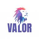 VALOR Agency Warszawa i okolice