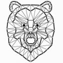 Film, reklma, live - Black Bear Agencja Kreatywna Sosnowiec i okolice